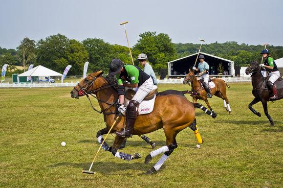 Essex Polo 2013