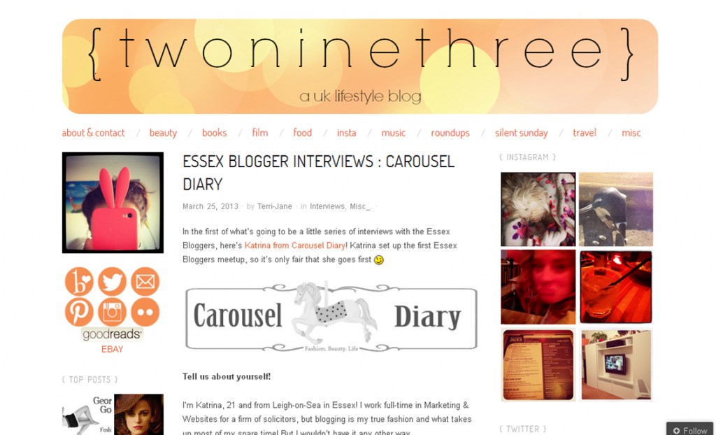 TwoNineThreeBlog